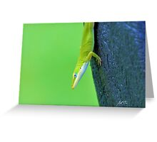 Green Anole ( Anolis carolinensis ) Greeting Card