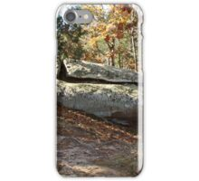 Rock Formation Amid the Trees iPhone Case/Skin