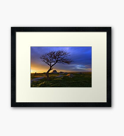 Dog Rocks Framed Print