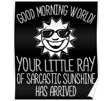 Ray Of Sarcastic Sunshine Poster