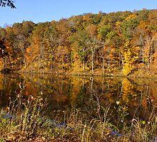 Pounds Hollow Lake  by Sandy Keeton