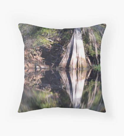 Fisheye Cypress Throw Pillow