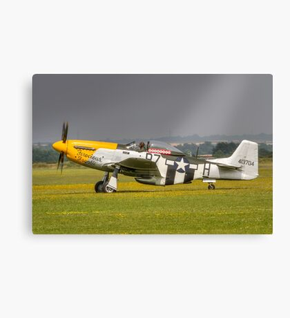 Mustang, Buttercups, Sunshine and Shower Canvas Print