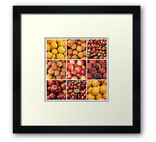 Le fruits de Provence by ProvenceProvence Framed Print