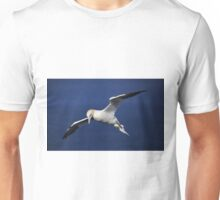Northern Gannet in flight Unisex T-Shirt