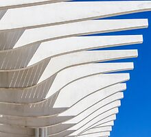 Lines in the sky by BeatrizGR