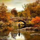 Fishing at Gapstow Bridge by Jessica Jenney