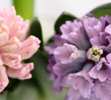The Sweet Scent of Hyacinths  - JUSTART ©  Sticker