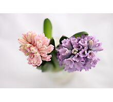The Sweet Scent of Hyacinths  - JUSTART ©  Photographic Print