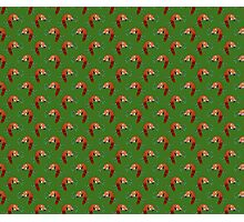 Sleeping Red Panda Green Pattern Photographic Print