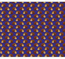 Sleeping Red Panda Blue Pattern Photographic Print