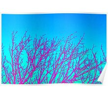 Pink on blue twigs Poster