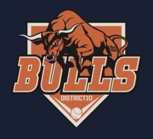District 10 Bulls by Crocktees
