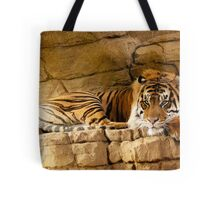 The 'Mightiest Cat'  Tote Bag