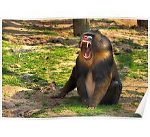 A Boring Day - Mandrill Poster