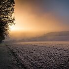 Frosty Sunrise by Dave Tickell