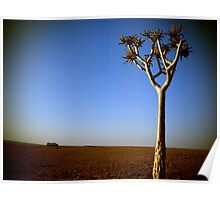Tree and Truck In Namibia Poster