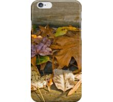 The Collection Grows iPhone Case/Skin