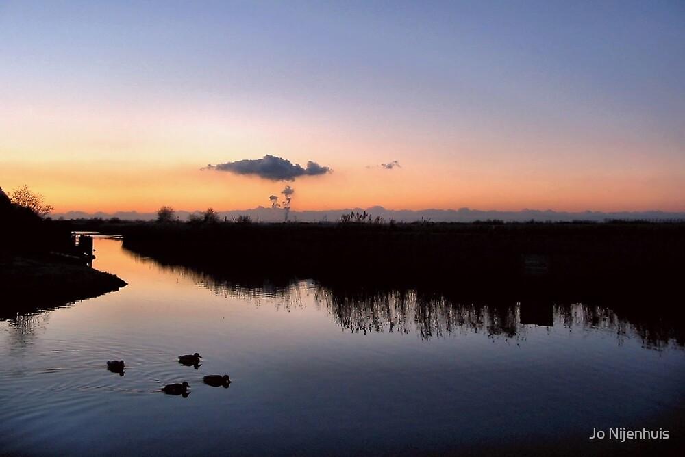 Good Night Duckies by Jo Nijenhuis