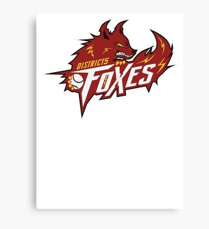 District 5 Power Foxes Canvas Print