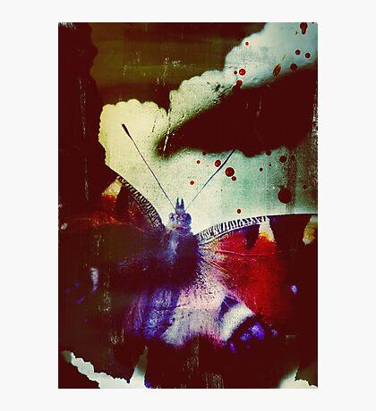 Fear of Butterflies Photographic Print
