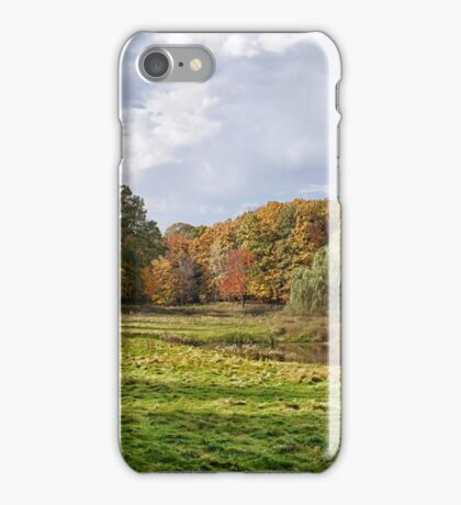 The Willow and The Little Red Tree iPhone Case/Skin