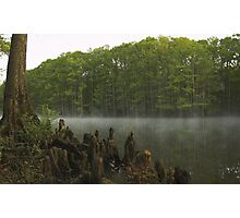 Morning on the Bayou Photographic Print