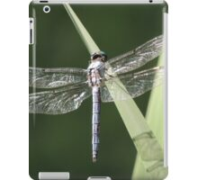 On Gossamer Wings iPad Case/Skin