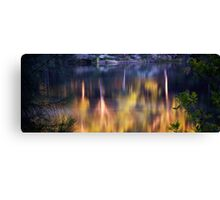 Reflective Effects Canvas Print