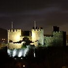 Conwy Castle at night by Johindes