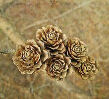 Tamarack Cones Look Like Little Wooden Flowers by MotherNature2