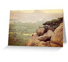 Hampi Monkeys Greeting Card