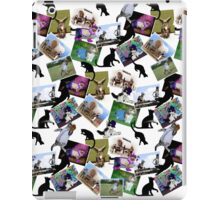 Collage of  Cat Photographs  iPad Case/Skin