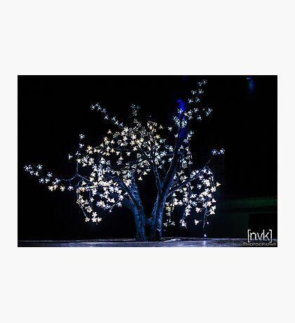 Tree Light Sculpture Photographic Print