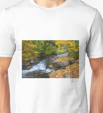 Pigeon Creek, Muskoka  Unisex T-Shirt