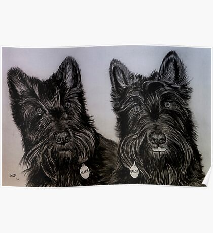 """Nellie and Gracie"" - Dog portraits Poster"