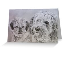 """""""Toto and Digby"""" - Dog portraits Greeting Card"""