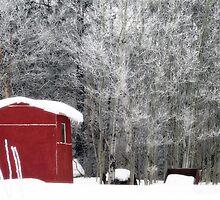 Morning frost by Janet Gosselin