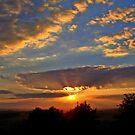 Good Night     ... sweet dreams by Redrose10