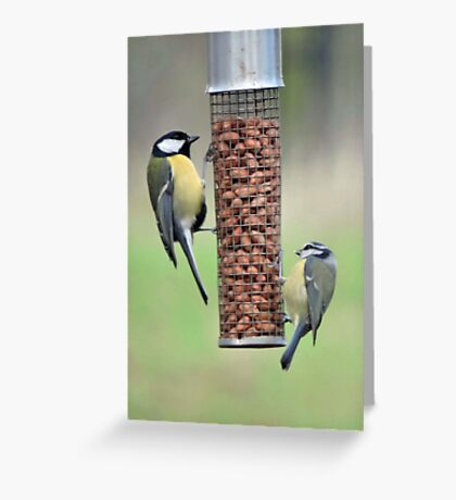 Go Nuts In Cold Weather Greeting Card