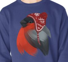 Cute bird in a winter knitted hat Pullover
