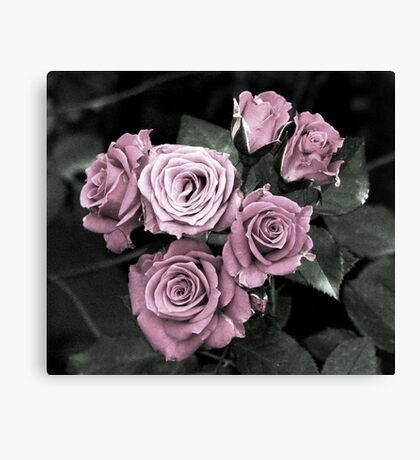 Forever Yours Canvas Print