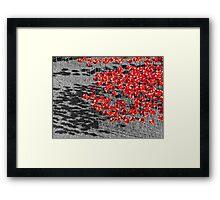 Poppies For The Fallen Framed Print