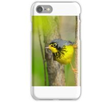Canada Warbler  iPhone Case/Skin