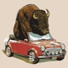 Bison in a Mini. by James Fosdike