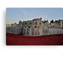 Poppies at the Tower of London - In the evening Canvas Print