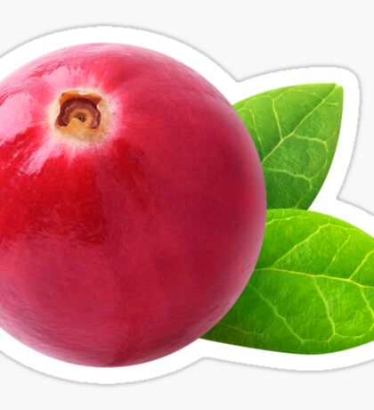 Cranberry Sticker