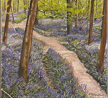 Bluebells - Frank's Wood - Art by Poppy-Art