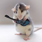 The Gitarist :) by Ellen van Deelen