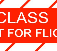 NASA - CLASS I Not For Flight Sticker